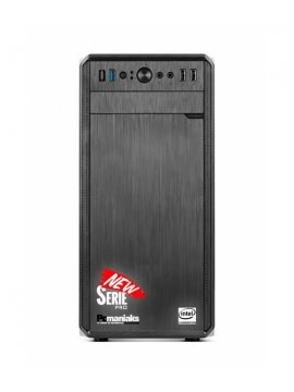 Ordenador Pro H-110 Intel G4560 1TB 8Gb Usb3,0 Hdmi