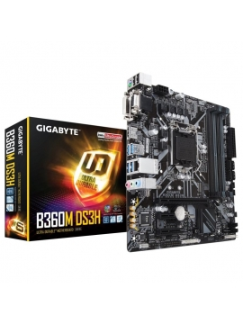 Placa Base Gigabite 1151 B360M DS3H
