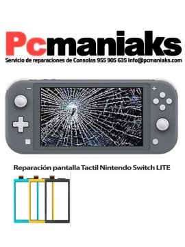 Reparacion Cambio de pantalla Tactil Nintendo Switch Lite